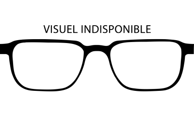Lunettes de soleil RAY-BAN RB3025 AVIATOR